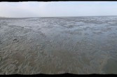 at low tide: Flattened Panorama #1